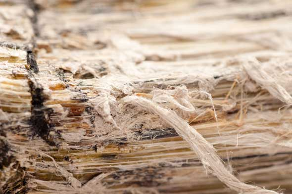 Asbestos-Removal-Company-Washington-DC
