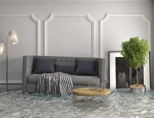Flooded House? 5 Steps to Take Now