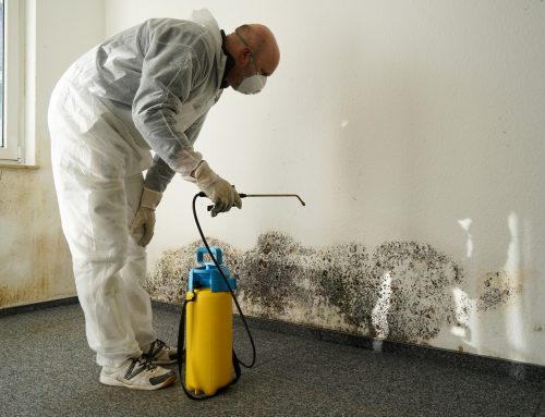 What to Do When Experiencing Water Damage in Northern Virginia