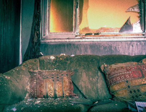 Everything You Need to Know About Fire Damage Restoration